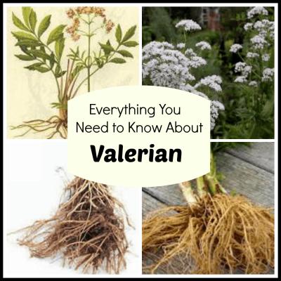 ValerianCollage