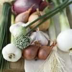 Garlic, Chives, Onions