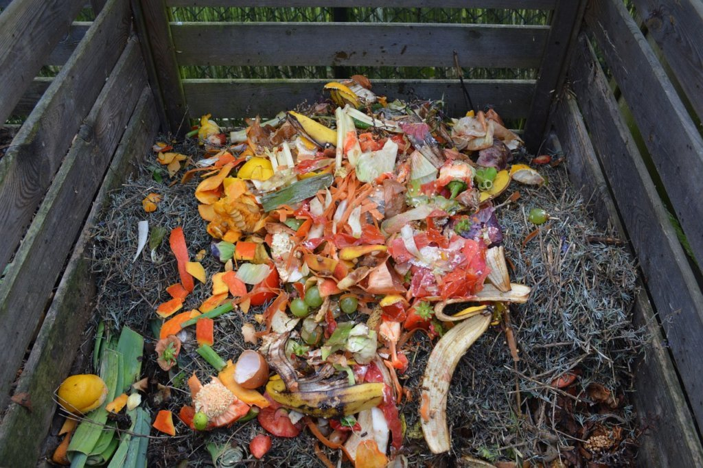 Compost scraps