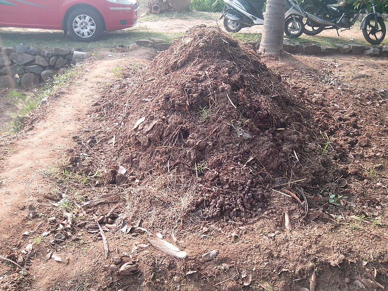 Making Compost in a Compost Pile