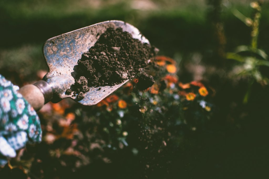 How to Make Compost: soil and scoop with hand