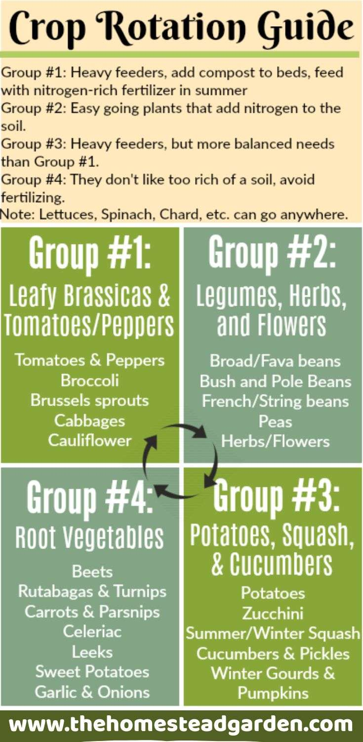Crop Rotation Guide from The Homestead Garden