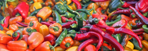 Varieties of Peppers and Extra Pepper Information