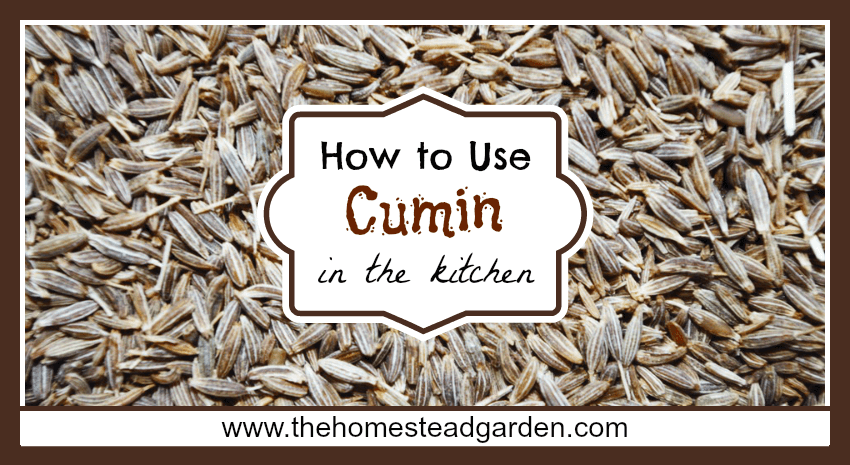 How to Use Cumin in the Kitchen