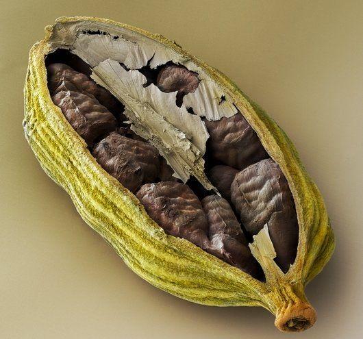 Cardamom pod with seeds