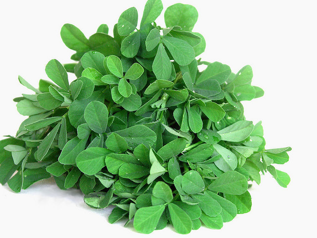 Fenugreek_leaves