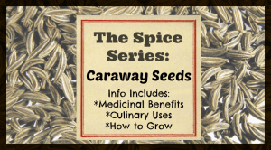 The Spice Series: Caraway Seeds