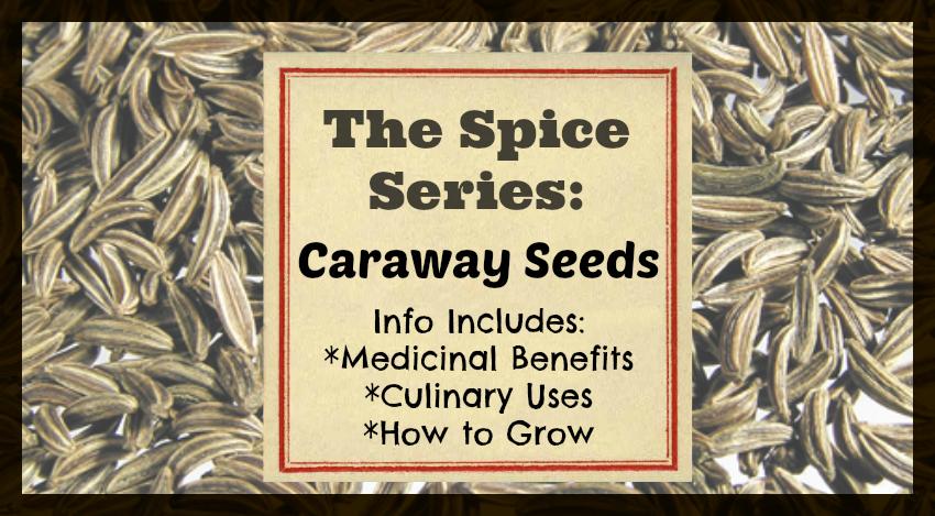 Caraway Seeds fb