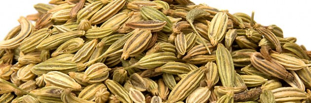 The Spice Series: Fennel Seeds