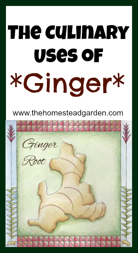 The Culinary Uses of Ginger