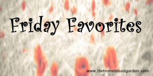 Friday Favorites #5