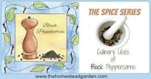 The Culinary Uses of Black Peppercorns
