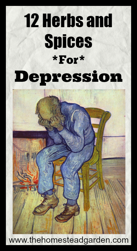 12 Herbs and Spices for Depression