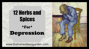 12 Herbs and Spices for Depression (and Resources)