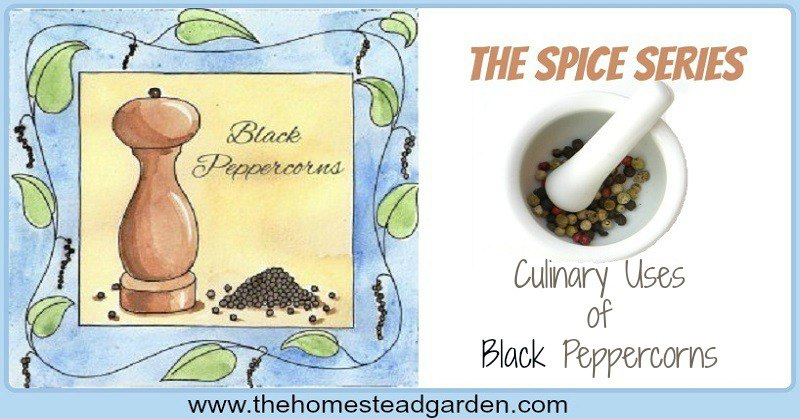 blackpeppercornsculfac