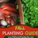 Fall Gardening Planting Guide
