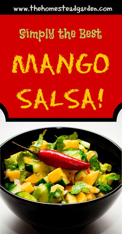 Simply the Best Mango Salsa Recipe
