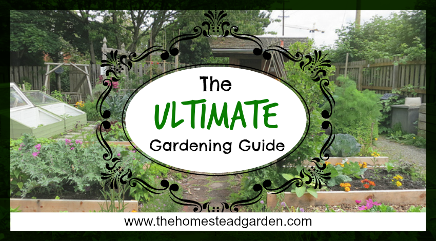 The Ultimate Gardening Guide - The Homestead Garden