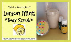 DIY Lemon Mint Body Scrub