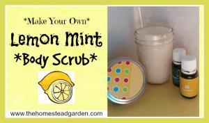 DIY Lemon Mint Body Scrub