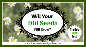 How to Check the Viability of Old Seeds