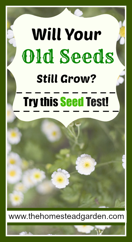 Test Try Results Original Crealash: How To Check The Viability Of Old Seeds