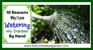 10 Reasons Why I Love Watering My Garden By Hand