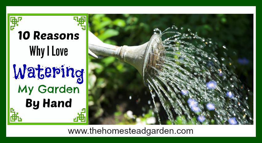 10 Reasons Watering fb