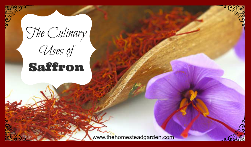 The Culinary Uses of Saffron fb