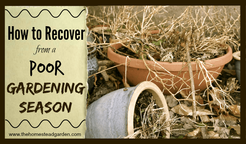 How to Recover from a Poor Gardening Season