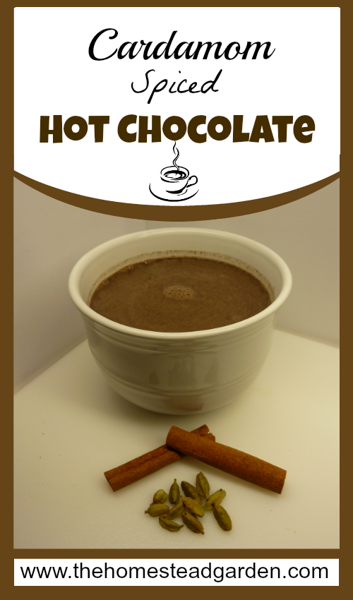 Cardamom Spiced Hot Chocolate Recipe