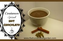 Cardamom Spiced Hot Chocolate Recipe