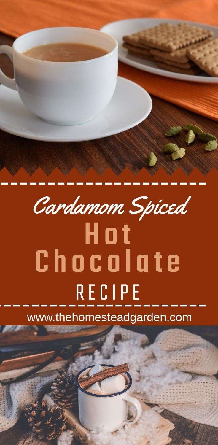 Cozy Cardamom Spiced Hot Chocolate Recipe