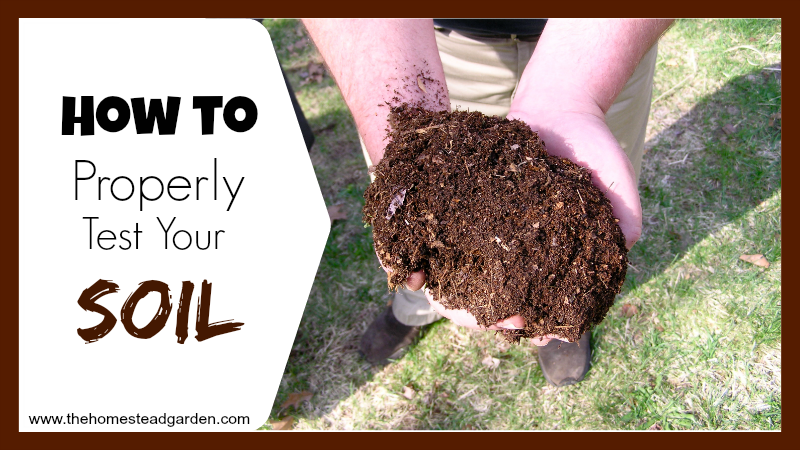 How to Properly Test Your Soil fb
