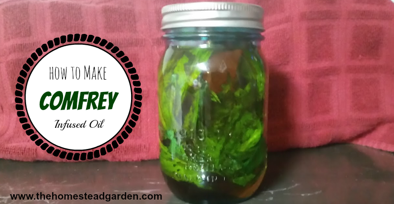 How to Make Comfrey Infused Oil fb