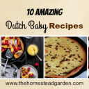 10 Amazing Dutch Baby Recipes