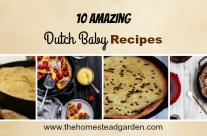 10 Amazing Dutch Baby Recipes