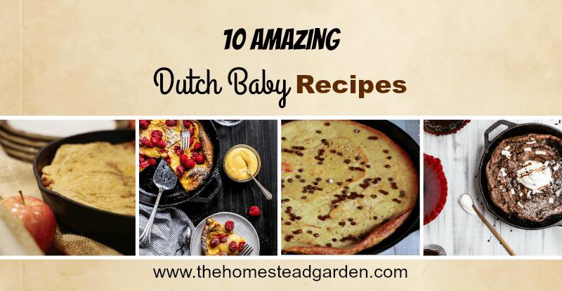10 Amazing Dutch Baby Recipes fb