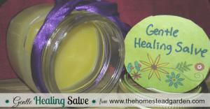 Gentle Healing Salve