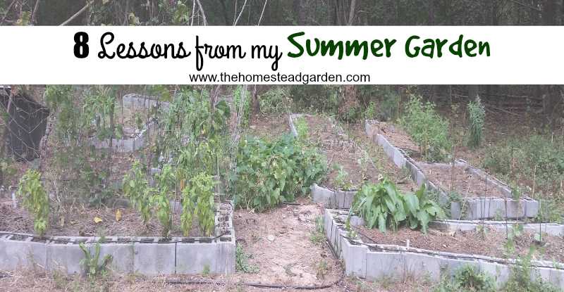 8-lessons-from-my-summer-garden-fb
