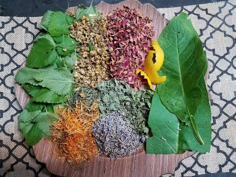 Queen of Hungary's Facial Toner Recipe: The Herbs