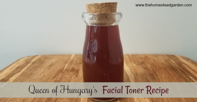 Excited too homemade facial toner fresh rosemary were