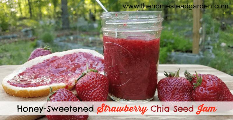 Honey-Sweetened Strawberry Chia Seed Jam Recipe
