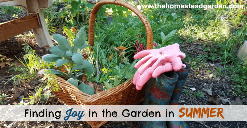 Finding Joy in the Garden in Summer