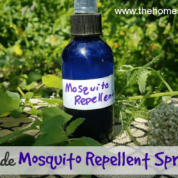 Homemade Mosquito Repellent Spray Recipe