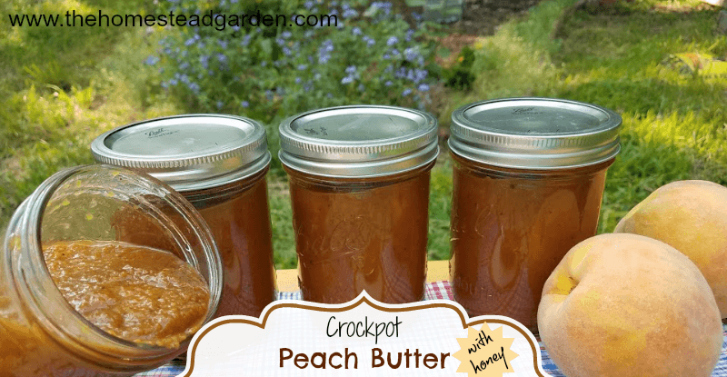 Crockpot Peach Butter with Honey