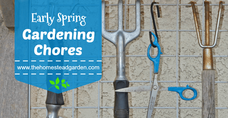 Early Spring Gardening Chores