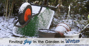 Finding Joy in the Garden in Winter fb