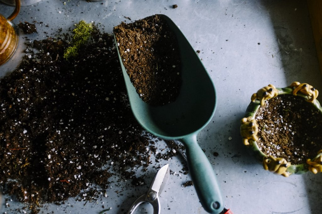 Fall Garden Tips: garden soil and garden tools