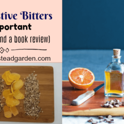Why Digestive Bitters are Important (Plus a Recipe and a Book Review)